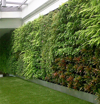 Gro wall vertical gardening system rainwater collection for Vertical garden wall systems