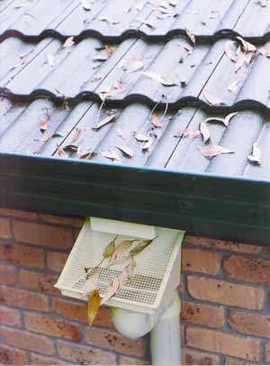 Rain Harvesting Pty Original Leaf Eater Downspout Filter