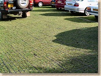 Grass Driveway Systems